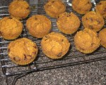 Pecan Pumpkin Chocolate Chip Muffins- Ready to Enjoy!