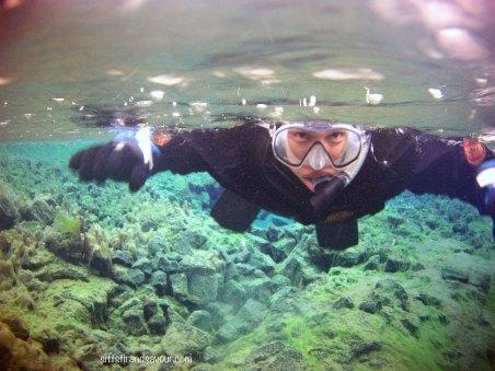 Silfra Swimming