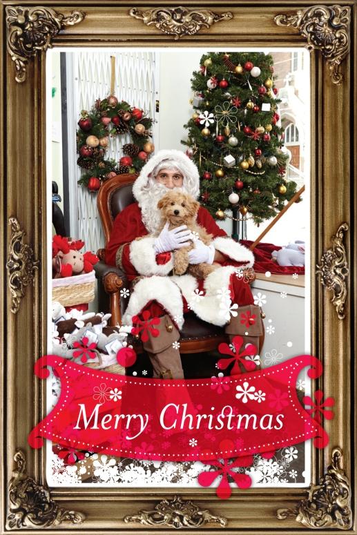 Wayne Merry Christmas