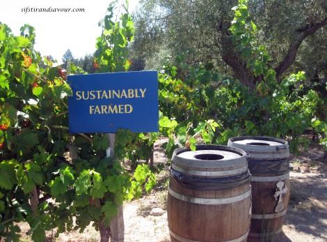 sustainablefarm